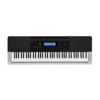 CASIO WK-240 keyboard